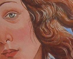 Venus detail